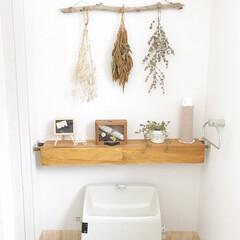 突っ張り棒/グリーン/DIY/100均/インテリア/住まい 最近のトイレです♩ トイレは癒しの空間に…