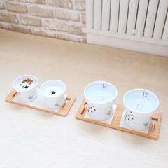 インテリア/猫 猫部屋です🐱  ご飯まわり、トイレまわり…(3枚目)