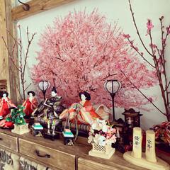 ディアウォール/ひな祭り/ピンク/ダイソー/セリア/100均/... 今日は雛祭りですね  お家でお祝いしてま…