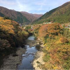 散歩/紅葉の山/秋/風景/揖斐/岐阜 久しぶりに徳山ダムに行く途中にチョット車…