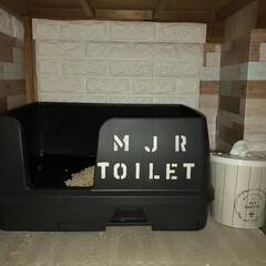 LIMIAペット同好会/にゃんこ同好会/トイレ/収納/雑貨/LIMIA手作りし隊/... にゃんともシリーズのおトイレが ブラック…