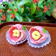 和菓子 椿の練り切り。 この季節になりましたね。
