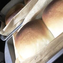 焼きたて/豆乳/バルミューダ/久しぶり/ミニ食パン/ケーキ型/... ものすご〜〜く 久々にパンを焼きました💦…