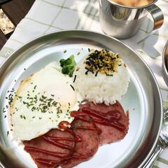 モーニングプレート/お庭/朝ごはん/息子/グルメ/フード/... 涼しいうちにお外で✨ アルミの食器で ア…(3枚目)