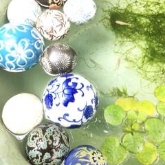 癒し/木陰/庭/キラキラ/ゆらゆら/浮き玉/... 本日【浮き玉】を 玄関前の 睡蓮鉢に浮か…(3枚目)