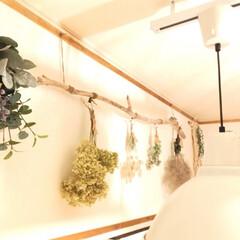 カウンター上の壁/ぶら下げる/流木/スワッグ/ドライフラワー/雑貨/... リビングkitchenカウンター上の壁に…(2枚目)