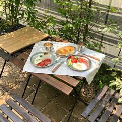 モーニングプレート/お庭/朝ごはん/息子/グルメ/フード/... 涼しいうちにお外で✨ アルミの食器で ア…(2枚目)