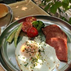 モーニングプレート/お庭/朝ごはん/息子/グルメ/フード/... 涼しいうちにお外で✨ アルミの食器で ア…(1枚目)
