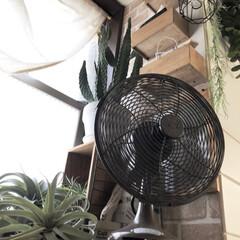 空気を回す/シーリングファン/扇風機/インテリア/住まい/節約 我が家の暑さ対策 ✨其の一✨ 基本は 部…