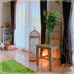 寝室の窓/寝室インテリア/寝室雑貨/寝室/令和の一枚/フォロー大歓迎/... 本日は快晴です❤️ 北側の広めの寝室から…(4枚目)