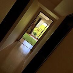 寝室コーデ/ベッドルーム/寝室インテリア/寝室の窓/窓から見える景色/寝室/... 寝室に向かう廊下から、山の緑がハッとする…