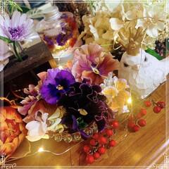 花あそび/お花のある生活/花のある暮らし/花のある生活/お花のある暮らし/ビオラ/... ベランダのお花を水に挿して、キッチンカウ…