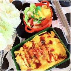 お弁当おかず/お弁当/わたしのごはん/おうちごはんクラブ/グルメ/フード/... 今日のお弁当🍱 オムソバ ギョウザ チー…
