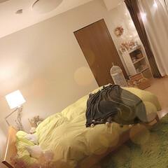 IKEA照明/間接照明/ダイソー購入品/ダイソー時計/寝室雑貨/ベッドカバー/... ベッドサイドにお気に入りのDAISO時計🕰