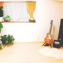 お花大好き❤/ベランダガーデン/サフィニア/イケア/洋室/ギター/... 強風の為、鉢植えを一部室内に取り込みまし…