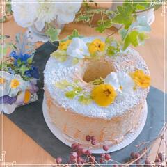 手作りシフォンケーキ/チューリップ/寄せ植え/お花大好き/LIMIAごはんクラブ/ハンドメイド/... お友だちのお家にお花を植えに行きました❤…(5枚目)