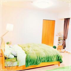 ドライフラワーのある暮らし/ドライフラワー/毛布/ベッドルーム/ベッド/寝室インテリア/... ベッドに毛布上下セット❣️ これでぬくぬ…