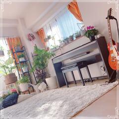 ピアノコーナー/ピアノ/LIMIAインテリア部/インテリアグリーン/観葉植物/春インテリア/... 必需品… ピアノと植物かなぁ(笑)