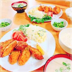 菜の花のごま和え/粕汁/牡蠣フライ/晩御飯/実家のお花🌸/LIMIAごはんクラブ/... 実家から大きな牡蠣をもらったので、晩御飯…