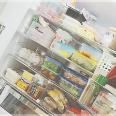 常備菜/冷蔵庫収納/冷蔵庫/セリア/キッチン収納/キッチン雑貨/... 食事情のイベント参加😊  うちは夫婦2人…(2枚目)