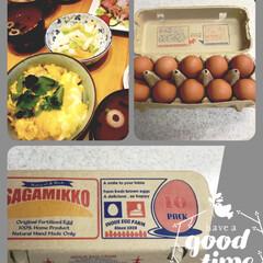 親子丼/相模っこ/たまご/おうちごはん/フード パッケージがかわいくて❤️ 新鮮な美味し…