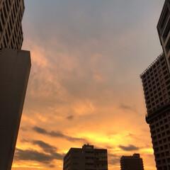 夕焼け/夏空 夏空 その3 今日の19時ちょいと前の空…