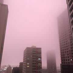 雨の日の空/秋/風景 今日の16時40分くらいの空です。 薄紫…