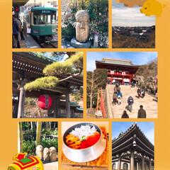 鎌倉、長谷/おでかけ/初詣 今日は毎年恒例の鎌倉へ初詣⛩に姉と一緒に…