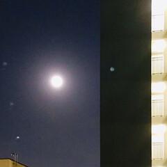 スーパームーン/満月 今晩はスーパームーン🌕 1年で1番大きな…