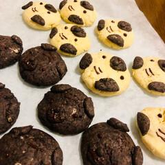 バレンタイン/手作り/タルト/チョコ嫌い/クッキー/レモンカード/... チョコ嫌いに送るバレンタイン!  1 い…(2枚目)