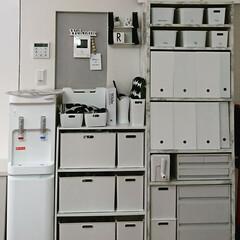 カラーボックス用収納ボックス インボックス Lサイズ SQB-L 日本製 収納ボックス 収納ケース 小物収納 ボックス ケース(小物収納、小物入れ)を使ったクチコミ「元々あった本棚をリメイク後にケースなどを…」