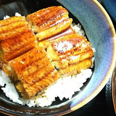 夏バテ/鰻 肉厚の鰻食べて夏バテ知らず♪