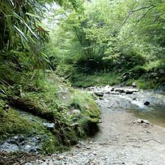 summer/山/川/おでかけ/旅行/風景/... 四国で見つけた 穴場の川スポット✴️✴️…