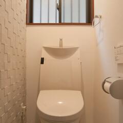 トイレ/調湿タイル/エコカラット トイレの壁一方に調湿性のあるタイル、エコ…