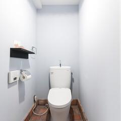 トイレ/レンガ/住まい 南プロヴァンスをイメージした爽やかで可愛…(1枚目)