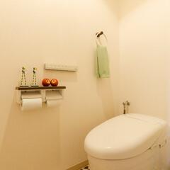 リフォーム/リノベーション/住まい/マンション/トイレ/フロアタイル/... 床のモロッカン柄のフロアタイルが目を引く…