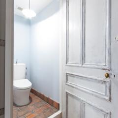 トイレ/ドア/アンティーク/住まい トイレのドアに選んだのはアンティークもの…(1枚目)
