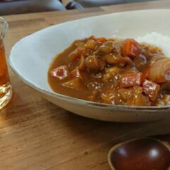器のある暮らし/信楽焼/カレー皿 5月に信楽の作家市で買ったお皿です。長い…
