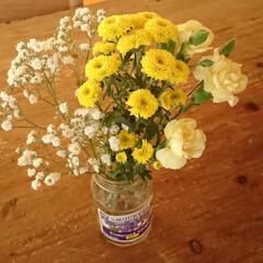 楽しみ/コースター/afternoon tea/空き瓶/花/Bloomee LIFE/...