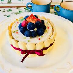 フェルトのケーキシリーズ 雨降っててなにも出来ないので 昔作ったキ…(2枚目)