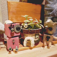 フェイクグリーン/シャクレルラスカル/セメント/プリンの容器/ロボットさんたち chapatyさんのphotoに憧れてセ…