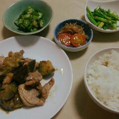 夏野菜献立/フード/おうちごはん 中学校の宿題で夏野菜を使った料理。と言う…