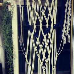 マクラメ編みカーテン/ロープ/Tシャツヤーン