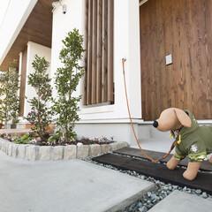 愛犬家住宅/愛犬家住宅コーディネーター/リードフック/足洗い場/犬用足洗い場/玄関脇のリードフック 玄関脇にはリードフックが用意されているの…