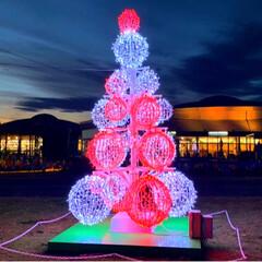 次男とお出かけ/ドライブ/佐野市/さのまる/イルミネーション/クリスマス/... 道の駅、どまんなかたぬまのイルミネーショ…