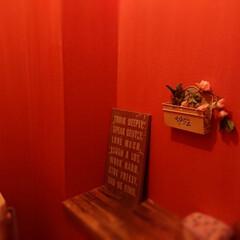 トイレ/トイレリフォーム/DIY/住まい/リフォーム トイレの壁紙を貼り替えたら、長男は1階の…