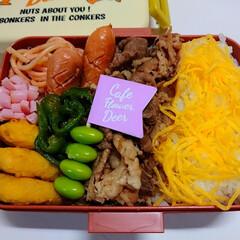 今日のお弁当/高校生男子お弁当/高校生弁当/おべんとう/お弁当/フォロー大歓迎/... 本日、高2息子お弁当。。。 お弁当箱につ…