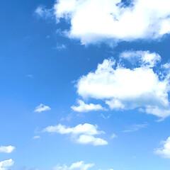 晴天/今日の空/青空/台風 みなさん台風は大丈夫でしたか?💦 昨日は…