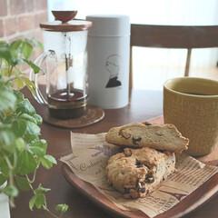 手作りお菓子/お菓子/お菓子作り/お家カフェ/キッチン/暮らし 時々つくるチョコとくるみのスコーン🕒😋 …(1枚目)