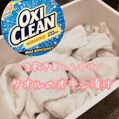 大掃除/1日1掃除/オキシ漬け/オキシクリーン/快適掃除/掃除/... 今日はタオルのオキシ漬けをしました⸜(…